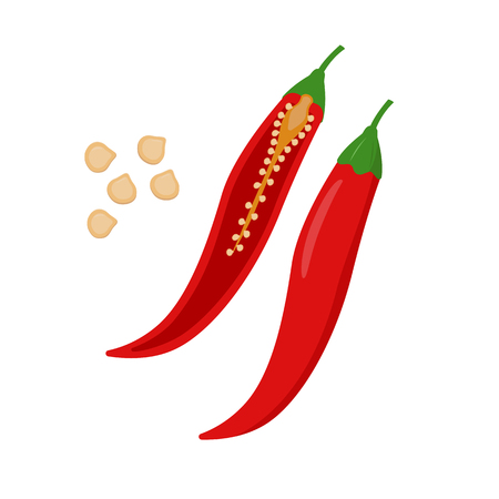 Chili pepper vector flat illustration. Whole and halved chilli and seeds isolated on white background. Packaging design element.