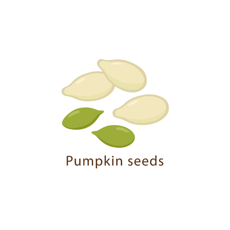 Pumpkin seeds isolated on white background vector illustration in flat design.
