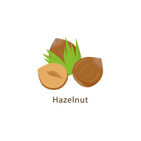 Hazelnut isolated on white background vector illustration in flat design. Ilustrace