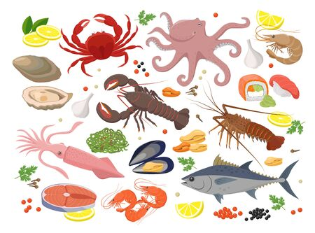 Seafood big collection of vector illustrations in flat design isolated on white background. Vector icon set of mussel, shrimp, squid, octopus, lobster, crab, mollusk, oyster, tuna fish, seaweed, roe.