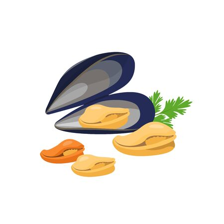Mussels vector illustration in flat design isolated on white background.