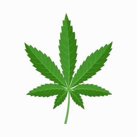 Cannabis leaf icon in flat design isolated on white background. Industrial hemp leaf logo concept.