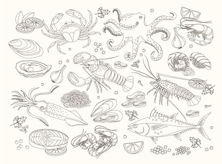 Seafood bid collection of line design elements, hand drawn vector graphics for menu template. Sea fish, sushi rolls, oysters, mussels, lobster, squid, octopus, crabs, prawns, salmon, shellfish, tuna.