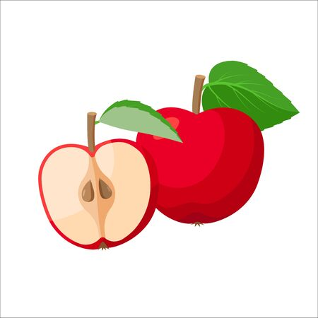 Red apples vector illustration isolated on white background. Sliced and whole apple. Ilustração