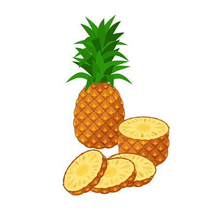 Pineapple Vector illustration isolated on white background. Juicy tropical exotic fruit - whole pineapple and sliced pieces.