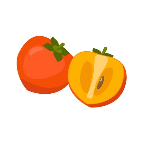 Persimmon vector illustration isolated on white background. Juicy tropical exotic fruit. Ilustração