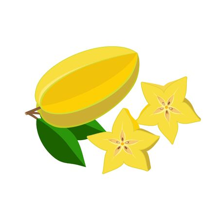 Carambola, star fruit vector illustration isolated on white background. Juicy tropical exotic fruit. 矢量图像
