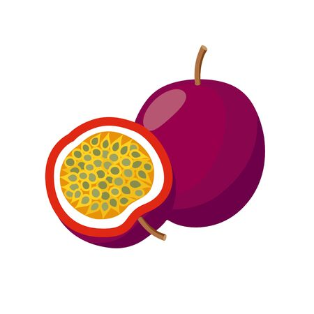 Passion fruit vector illustration isolated on white background. Juicy tropical exotic fruit.