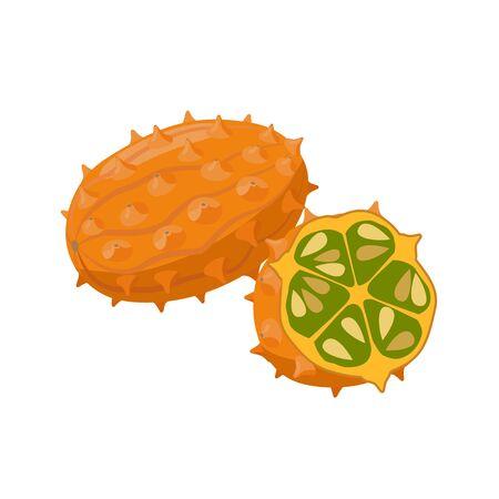 Kiwano vector illustration isolated on white background. Juicy tropical exotic fruit - horned melon Illustration