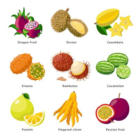 Exotic fruits - icon set, vector detailed illustrations isolated on white background. Juicy beautiful pitaya, durian, carambola, kiwano, rambutan, cucamelon, pomelo, fingered citron, passion fruit