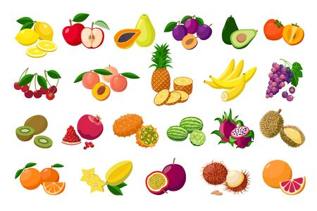 Large fruit collection detailed vector illustrations isolated on white background. Juicy pitaya, durian, carambola, kiwano, rambutan, cucamelon, pomelo, fingered citron, passion fruit, peaches lemon