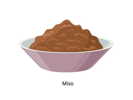 Miso. Soybean product - vector illustration isolated on white background.