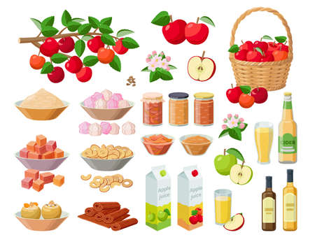 Apple harvest large collection of vector illustrations isolated on white background. Red apples on branch, in basket, juice, cider, jam, marmalade, pectin, zefir, marshmallow, confiture, pastila