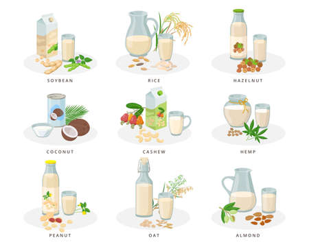 Vegan milk set, almond, soybean, rice, hazelnut, coconut, cashew, hemp, peanut, oat milk. Varius bottles, packages, glasses, jugs with plant milk and nuts collection of vector illustrations.