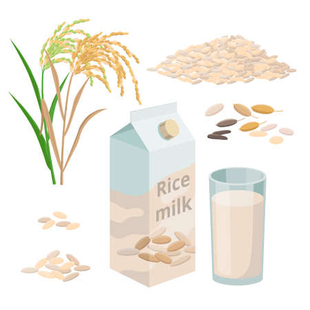 Rice milk package and glass of rice plant milk, pile of rice grains and plant. Set of vector illustrations isolated on white background. Illusztráció