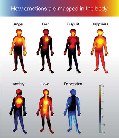 heat map of the human body depending on the emotion