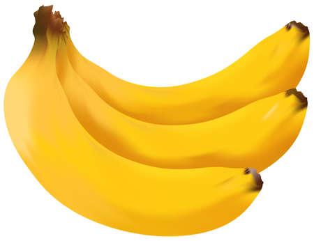 banana: Banana Illustration
