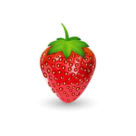 strawberry Ilustração