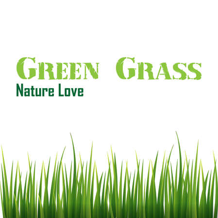 novice: green grass