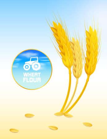 overcome: wheat Illustration