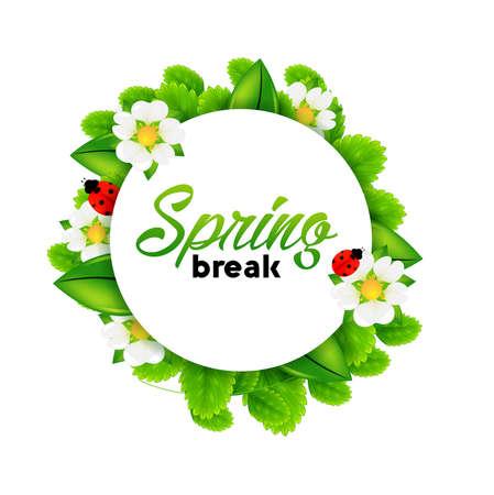 spring break: spring Illustration