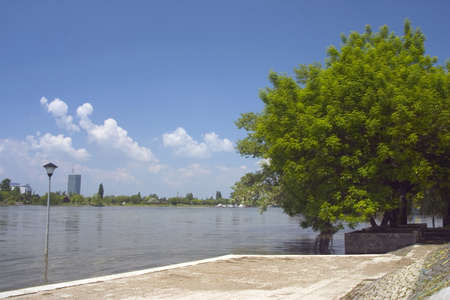 landscape of river side with tree photo