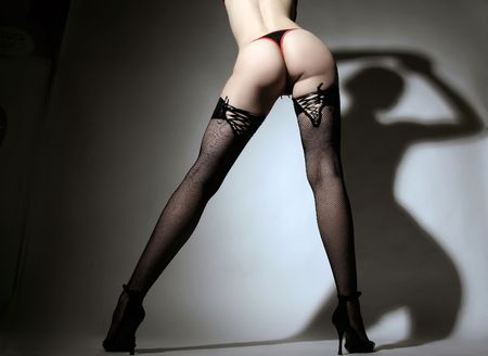 a photo of a lady in stockings with long legs