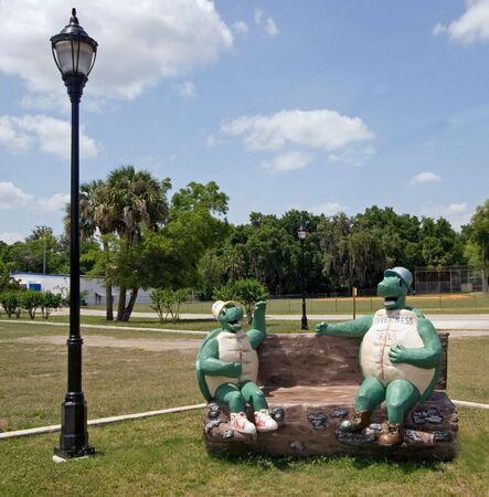 Fun Gopher Turtle in a park in Inverness Florida