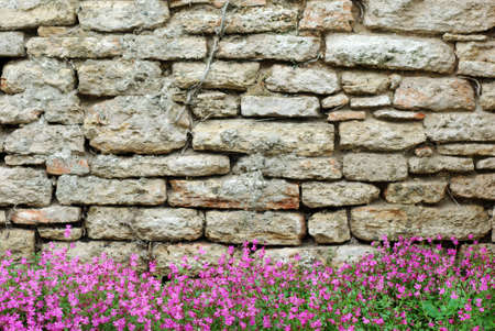 A decorative whitewashed stone wall with bougainvillea