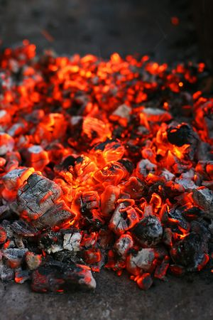 Hot, red, split charcoal close-up in blur background Stock Photo