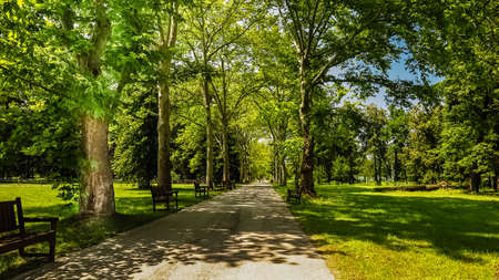 Alley in Park Museum Vrana. Park created by King Ferdinand in Sofia. Bulgaria.