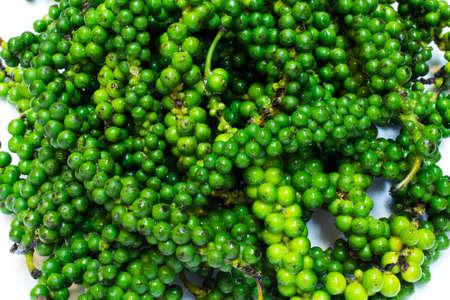 carminative: Piper nigrum L is herb for cook