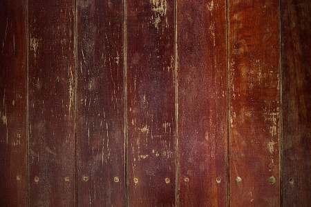 Wood line  is old for background photo