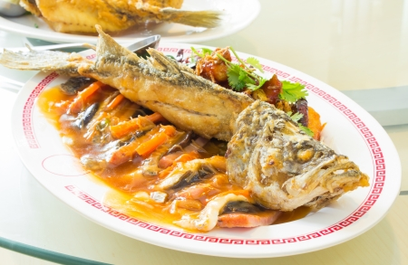 Snapper fish fried with  sauce,Thai food photo