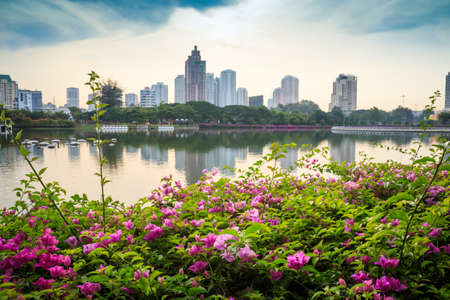 Flowers in front general Building and Blue sky Bright Day with reflect in Bangkok Stock Photo - 24560276