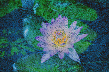 grune: Beautiful lotus petal on grune wall Stock Photo
