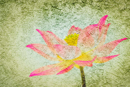 grune: Beautiful lotus petal on grune wall Stock Photo