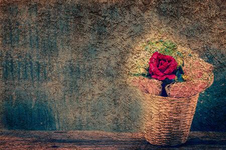 grune: Rose flowers on grune wall,vintage retro Stock Photo
