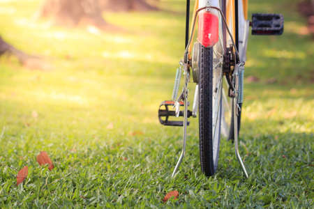 exert: Bicycle in the green park Stock Photo