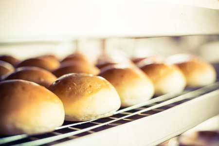 Delicious buns with crust on blurred bakery indoor background.