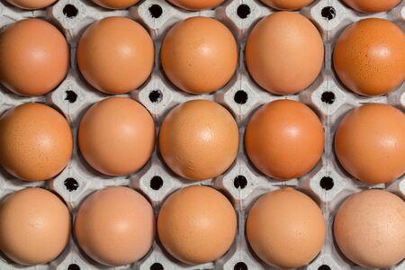 speckle: Egg, Chicken Egg Stock Photo