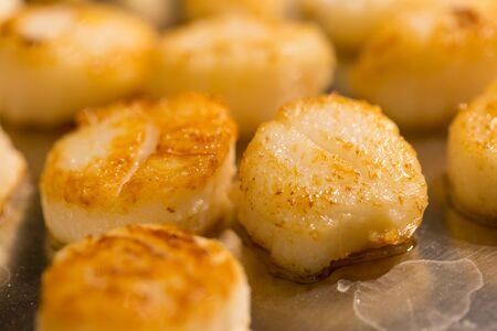 petoncle: Scallop meat grilled close-up Banque d'images