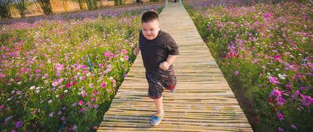 Children runing in Cosmos flowers garden. Happy playing