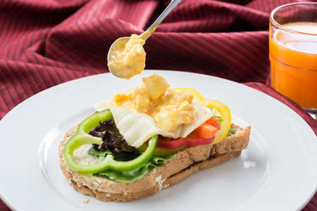 sanwich: Food series : Egg and cheese sandwich whole wheat bread on white plate