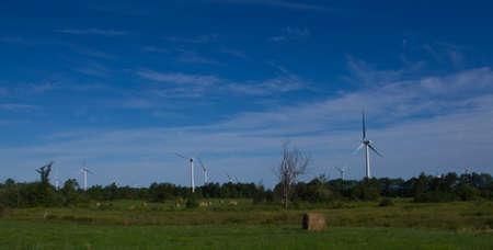 hay field: Le turbine eoliche vicino campo di fieno Archivio Fotografico
