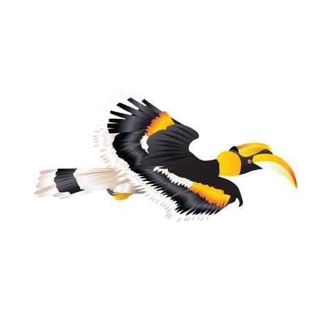 Great Hornbill flying in nature Illustration