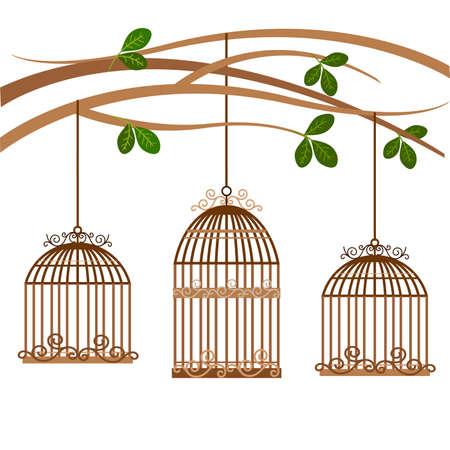 bird cage vintage 向量圖像