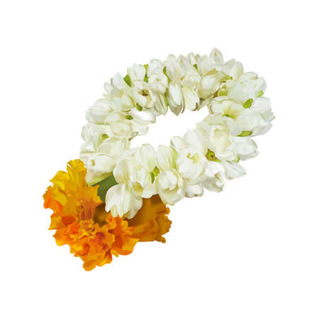 Thai garland jasmine flower Иллюстрация