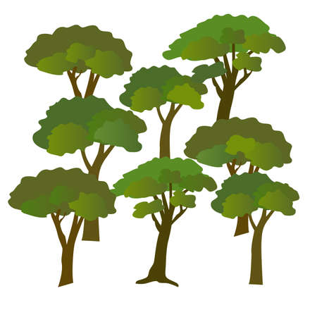 Big tree in jungle vector