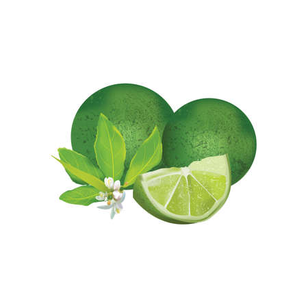 lemoGreen Lime Fresh with flower